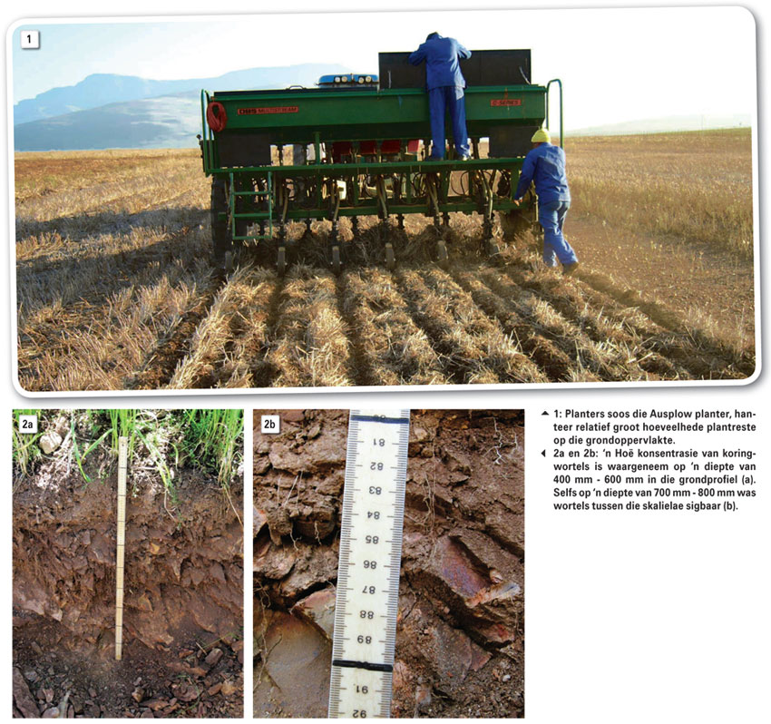 Bewaringsboerdery se effek op stikstofbemestingsnorme vir koring en