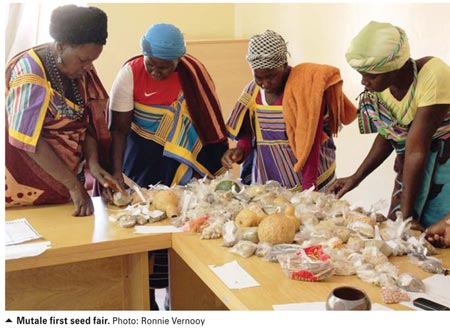 Community seed banks: Farmers' platform for crop conservation and improvement