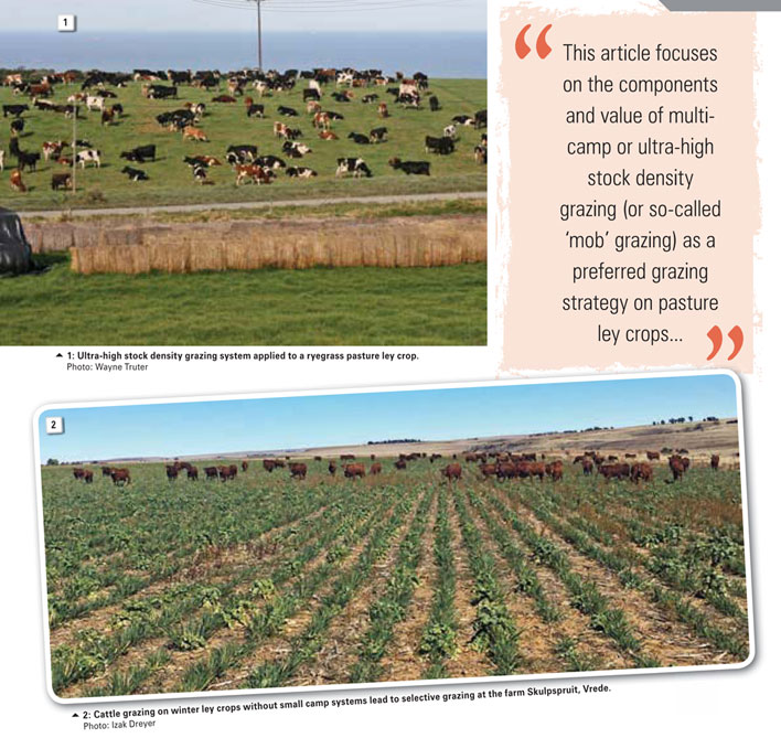 Conservation agriculture: Ultra-high stock density grazing systems