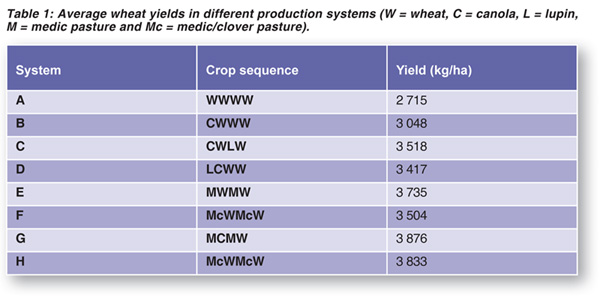 Improve your wheat yield with crop rotation