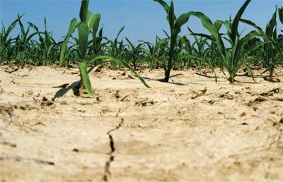 Thousands benefit from Drought Relief Fund