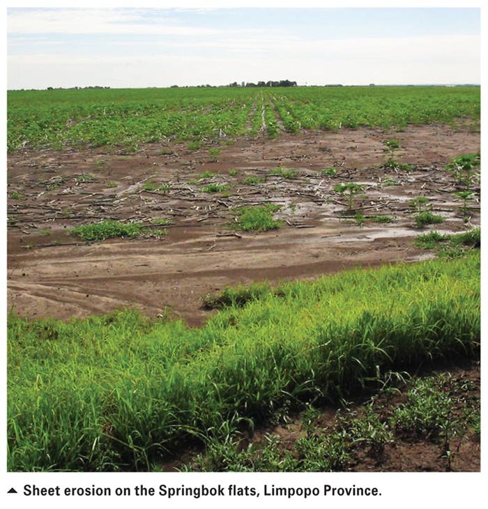 Soil erosion in south africa its nature and distribution for Soil erosion