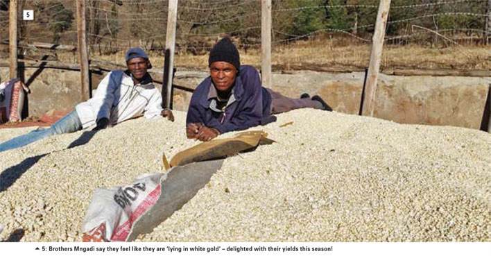 When Grain SA and the Jobs Fund join hands ...and the story of two farmers