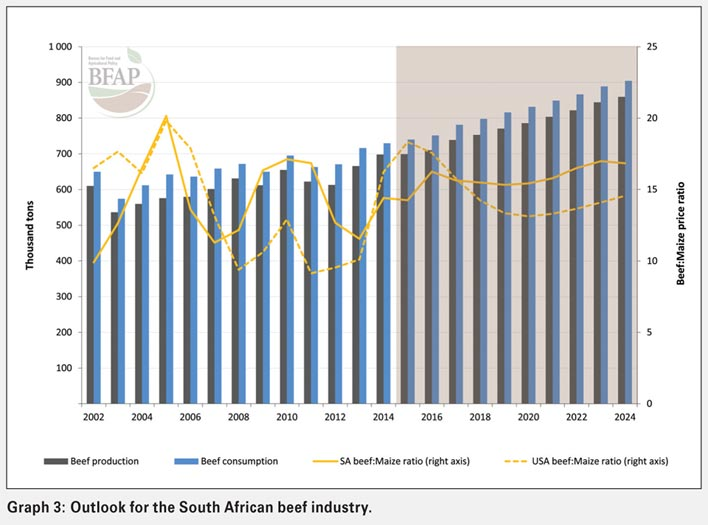 South African beef industry