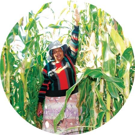 Grain SA interviews... Jabulile Elizabeth Ngcobo