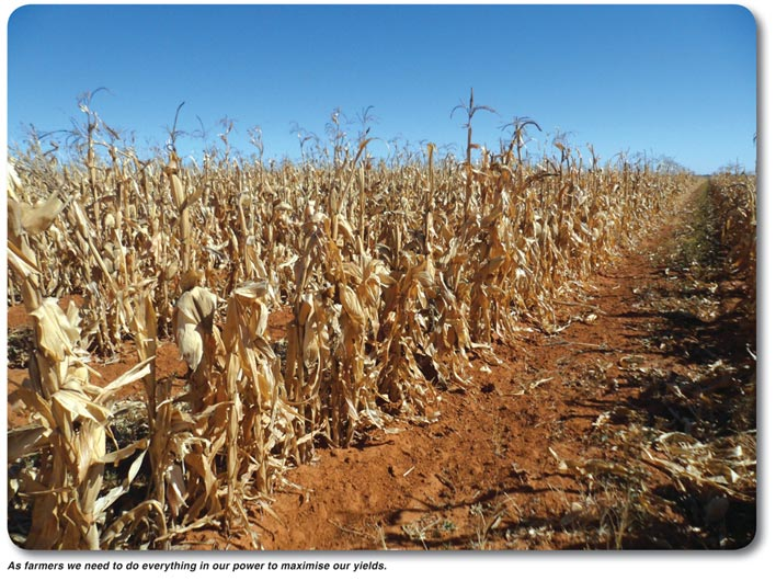HARVEST TIME – failing to plan, is planning to fail