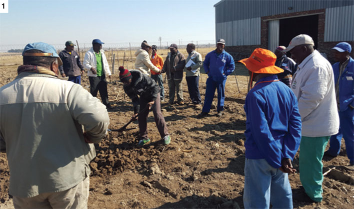 Maize Trust enables training for more than 1 000 farmers
