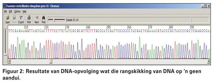 Die interessante navorsingsveld van molekulere biologie bekyk