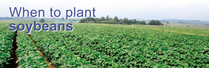 When to plant soybeans