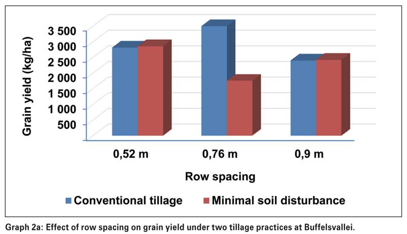 Do row spacing and plant density influence maize productivity under