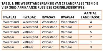 Suid-Afrika: Wêreldleier in Russiese koringluisweerstandbiedende kultivars